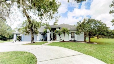 11639 Wild Cat Lane, New Port Richey, FL 34654 - MLS#: W7802380