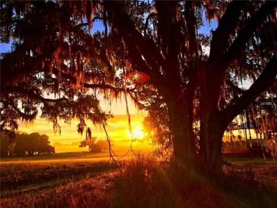 24480 Mondon Hill Road, Brooksville, FL 34601 - MLS#: W7802829