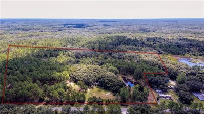 4000 Burwell Road, Webster, FL 33597 - MLS#: W7802903