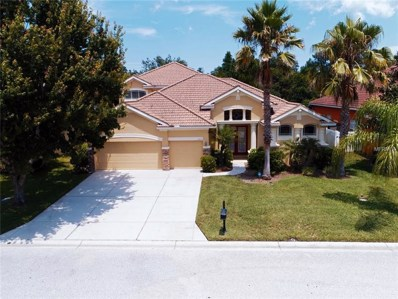11453 Oyster Bay Circle, New Port Richey, FL 34654 - MLS#: W7803001