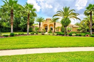 9923 Menander Wood Court, Odessa, FL 33556 - #: W7803094
