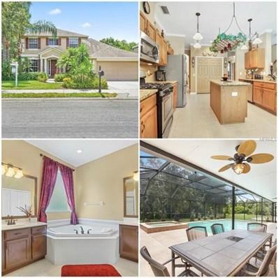 2817 Brinley Drive, Trinity, FL 34655 - MLS#: W7803143