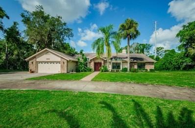 6808 Ridge Top Drive, New Port Richey, FL 34655 - #: W7803559