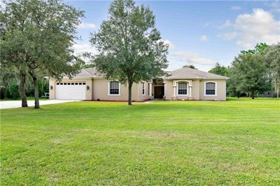 13133 Whitmarsh Street, Spring Hill, FL 34609 - MLS#: W7804003