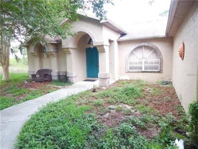 2416 Dubois Avenue, Spring Hill, FL 34609 - MLS#: W7804012