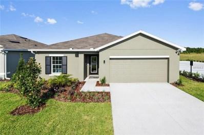 14504 Haddon Mist Drive, Wimauma, FL 33598 - MLS#: W7804116