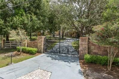 199 Old East Lake Road, Tarpon Springs, FL 34688 - MLS#: W7804333