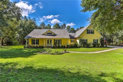 32550 Timber Hill Drive, Dade City, FL 33523 - MLS#: W7804797