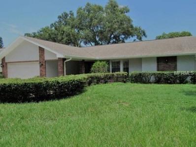 2839 Kavalier Drive, Palm Harbor, FL 34684 - MLS#: W7804826
