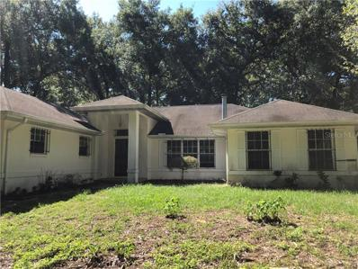 39116 Sheffey Lane, Dade City, FL 33525 - MLS#: W7805186