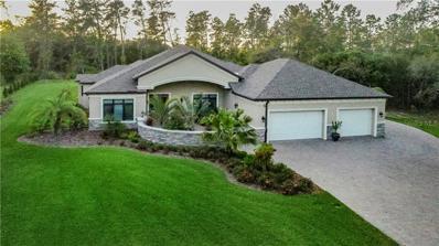 13537 Gopher Pond Court, Hudson, FL 34669 - MLS#: W7805218