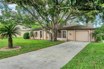 1346 Waterfall Drive, Spring Hill, FL 34608 - MLS#: W7805581