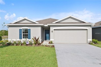 10423 Candleberry Woods Lane, Gibsonton, FL 33534 - MLS#: W7805753