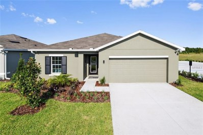 10416 Candleberry Woods Lane, Gibsonton, FL 33534 - MLS#: W7805754