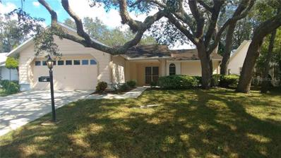 4830 Sandpointe Drive, New Port Richey, FL 34655 - #: W7806147