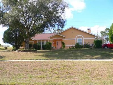 13245 Cecil Court, Spring Hill, FL 34609 - MLS#: W7806181
