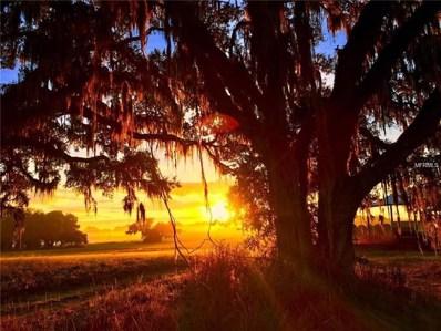 24480 Mondon Hill Road, Brooksville, FL 34601 - MLS#: W7806242