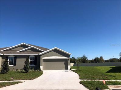 10551 Heron Hideaway Loop, Land O Lakes, FL 34638 - MLS#: W7806403