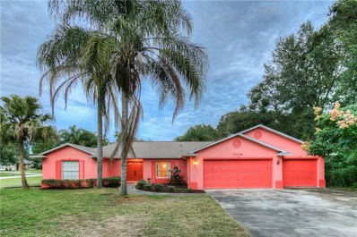10136 Indian Mound Drive, New Port Richey, FL 34654 - MLS#: W7806656