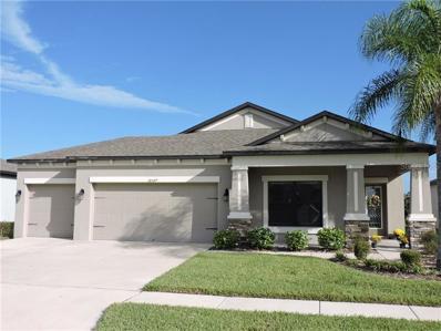 18597 Rococo Road, Spring Hill, FL 34610 - #: W7806693