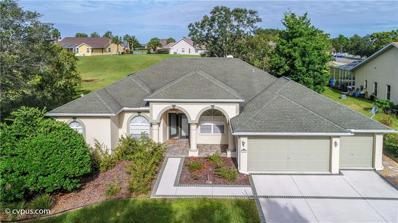 13459 Pullman Drive, Spring Hill, FL 34609 - MLS#: W7806696