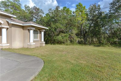 10427 Gypsy Avenue, Weeki Wachee, FL 34613 - MLS#: W7806892