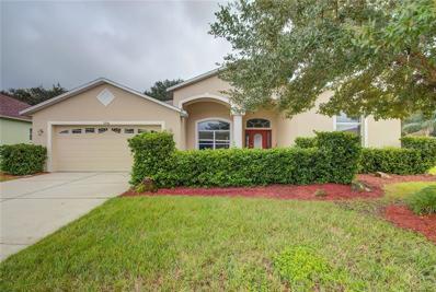 3746 Austin Range Drive, Land O Lakes, FL 34639 - MLS#: W7806950