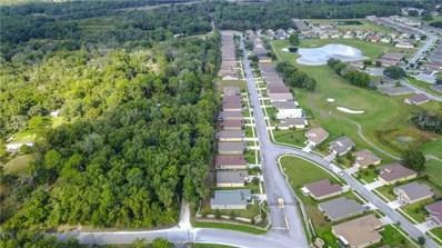 13241 Meadow Golf Avenue, Hudson, FL 34669 - #: W7806973