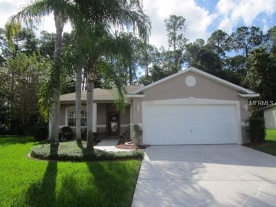 11432 Windstar Court, New Port Richey, FL 34654 - MLS#: W7807014