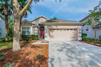 15447 Pepper Pine Court, Land O Lakes, FL 34638 - MLS#: W7807210