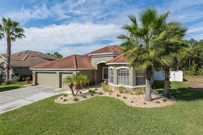 11635 Manistique Way, New Port Richey, FL 34654 - MLS#: W7807240
