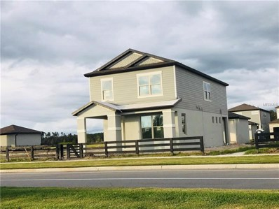 11882 Blamey Trail, Odessa, FL 33556 - MLS#: W7807241