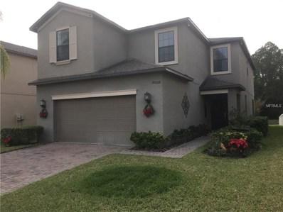 20026 Date Palm Way, Tampa, FL 33647 - #: W7807376