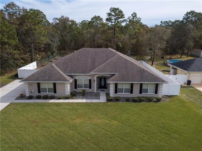 12402 Jaybird Road, Brooksville, FL 34614 - MLS#: W7807391
