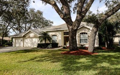 8321 Kabardin Court, Trinity, FL 34655 - MLS#: W7807444