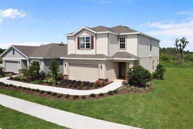 11309 Hudson Hills Lane, Riverview, FL 33579 - #: W7807792