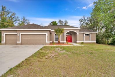 13016 Hooper Road, Weeki Wachee, FL 34614 - MLS#: W7808259