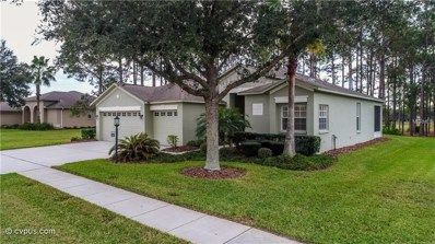 11126 Pebble Glen Way, Hudson, FL 34667 - MLS#: W7808461