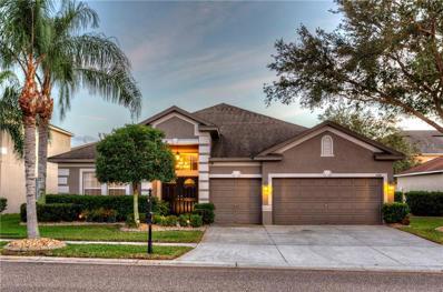 1620 Sweetspire Drive, Trinity, FL 34655 - #: W7808488