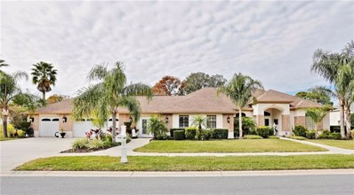 467 Castille Drive, Spring Hill, FL 34608 - #: W7808643