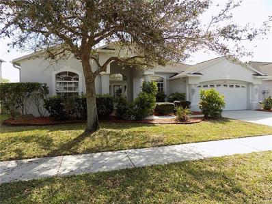 1618 Swamp Rose Lane, Trinity, FL 34655 - #: W7809890