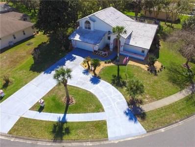 10326 Palmgren Lane, Spring Hill, FL 34608 - #: W7809944