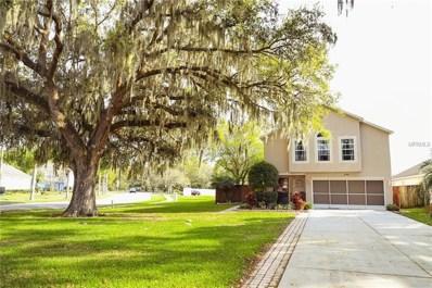 30200 Double Drive, Wesley Chapel, FL 33545 - #: W7810321