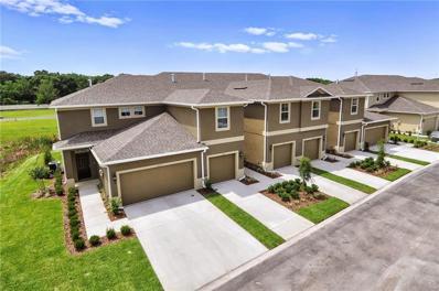 10766 Verawood Drive, Riverview, FL 33579 - #: W7810425