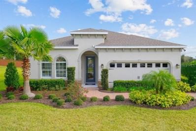 11408 Hudson Hills Lane, Riverview, FL 33579 - #: W7810704