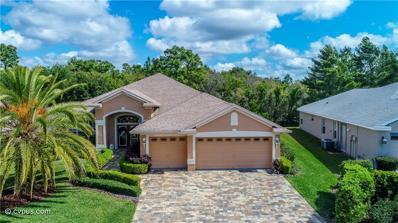1260 Springfield Drive, Spring Hill, FL 34609 - MLS#: W7811180