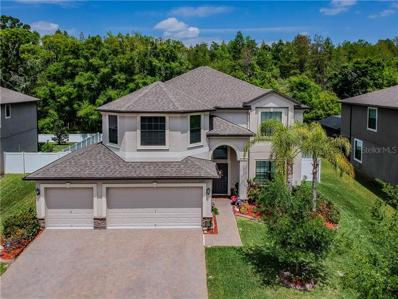 12391 Crestridge Loop, Trinity, FL 34655 - #: W7811281