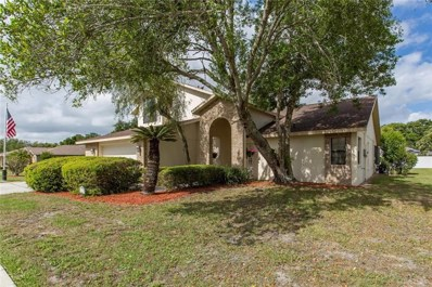 1133 Overland Drive, Spring Hill, FL 34608 - #: W7812239