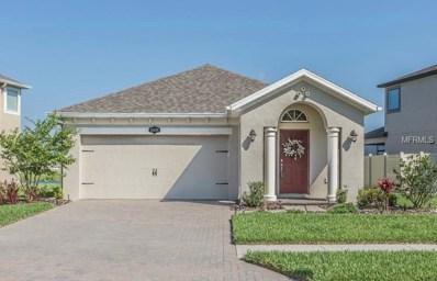 19349 Roseate Drive, Lutz, FL 33558 - #: W7812663