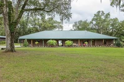 22250 Hayman Road, Brooksville, FL 34602 - MLS#: W7812852